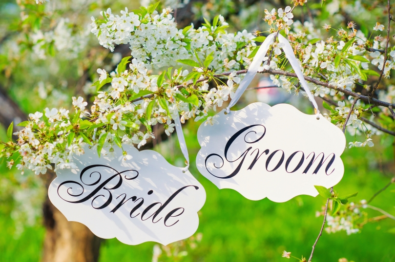 Bride and groom decoration boards